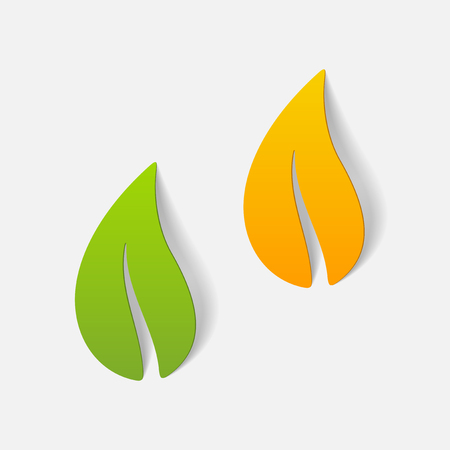 realistic design element: leaf Vector