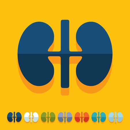 Flat design: kidneys Stock Vector - 27410029