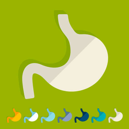 Flat design: stomach Stock Vector - 27409556