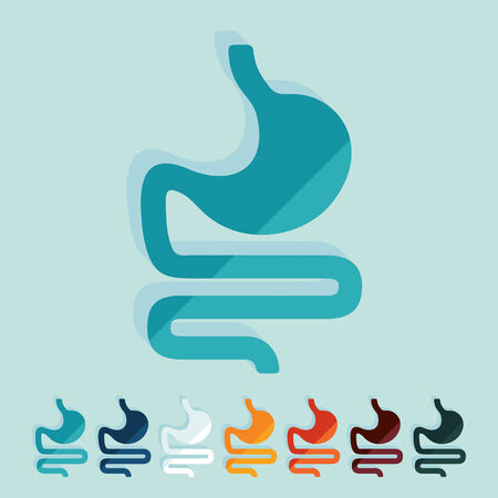 Flat design: stomach Stock Vector - 27410615