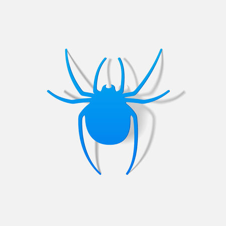 spider: realistic design element: spider Illustration