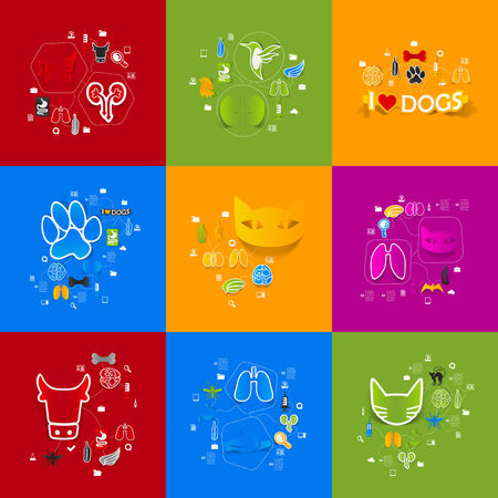 Veterinary sticker infographic Vector