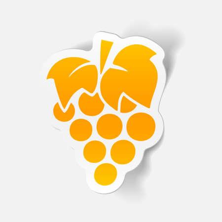 realistic design element: grapes Vector