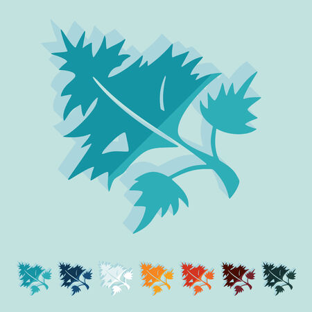 dill: Flat design: parsley, dill Illustration