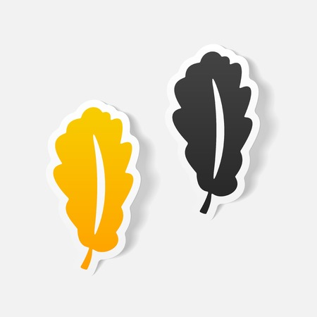 chlorophyll: realistic design element: leaf