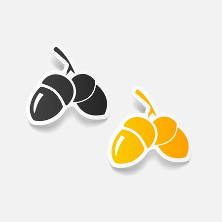 acorn: realistic design element: acorns Illustration