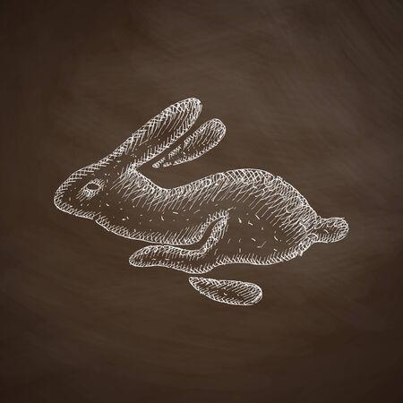 coniglio di pasqua: icona coniglio di Pasqua Vettoriali