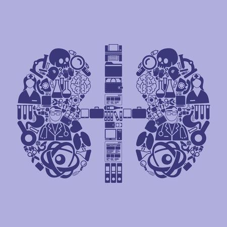 kidneys: kidneys icon