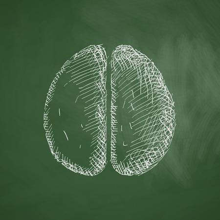 comprehension: brain icon