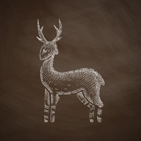 white tail deer: deer icon