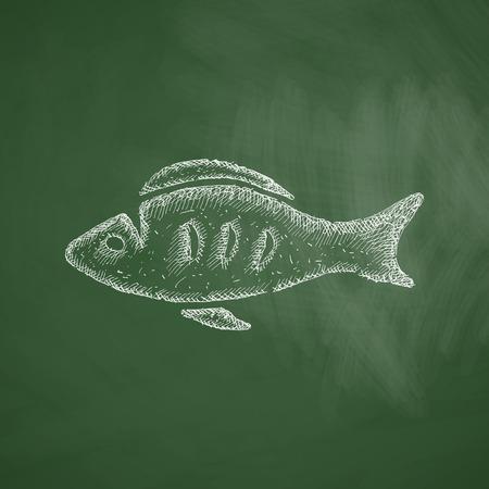 ichthyology: fish icon