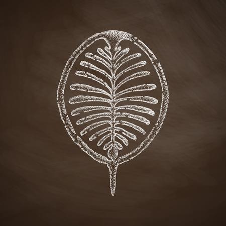ali: palm Jebel Ali icon Illustration