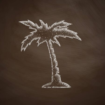subtropics: palm icon Illustration
