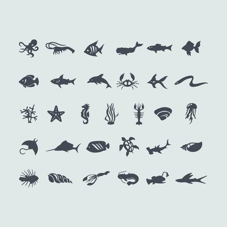 calamares: Conjunto de animales marinos iconos