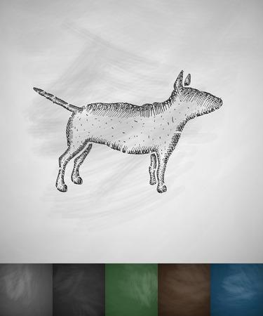 handlers: bull terrier icon. Hand drawn illustration on Chalkboard