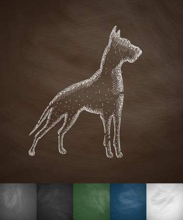 great dane: great dane icon. Hand drawn illustration on Chalkboard Illustration