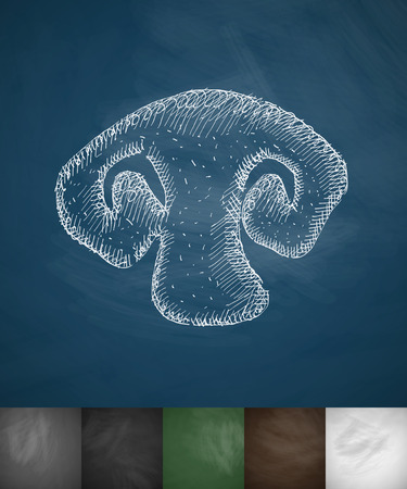 sponge mushroom: mushroom icon. Hand drawn vector illustration. Chalkboard Design