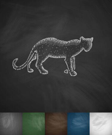 viviparous: cheetah icon. Hand drawn vector illustration. Chalkboard Design