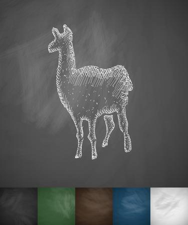 animal viviparous: lama icon. Hand drawn vector illustration. Chalkboard Design