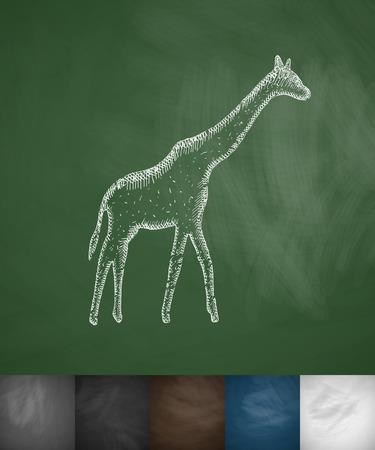 viviparous: giraffe icon. Hand drawn vector illustration. Chalkboard Design