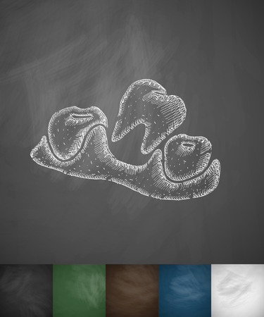 lost: lost tooth icon. Hand drawn vector illustration. Chalkboard Design