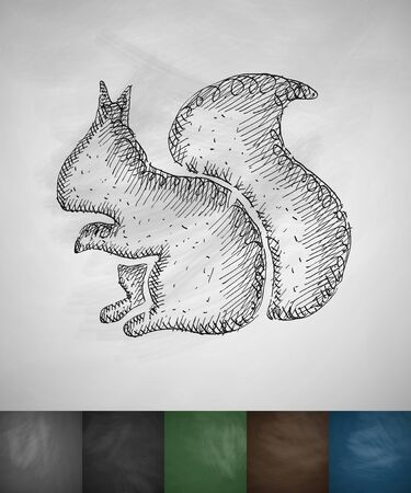 viviparous: squirrel icon. Hand drawn vector illustration. Chalkboard Design Illustration