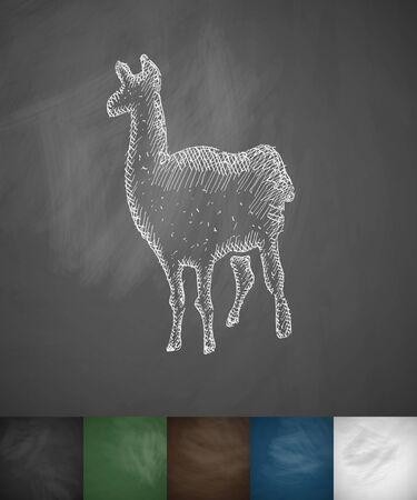 viviparous: lama icon. Hand drawn vector illustration. Chalkboard Design