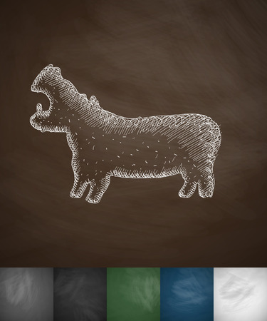 viviparous: hippopotamus icon. Hand drawn vector illustration. Chalkboard Design