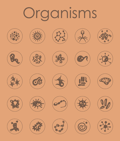 bacteria cell: It is a set of organisms simple web icons