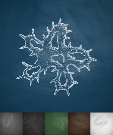 microbio: icono microbio. Dibujado a mano ilustraci�n vectorial. Pizarra Dise�o Vectores