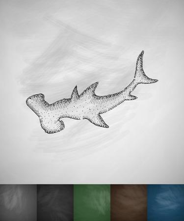 hammerhead shark: hammerhead shark icon. Hand drawn vector illustration. Chalkboard Design