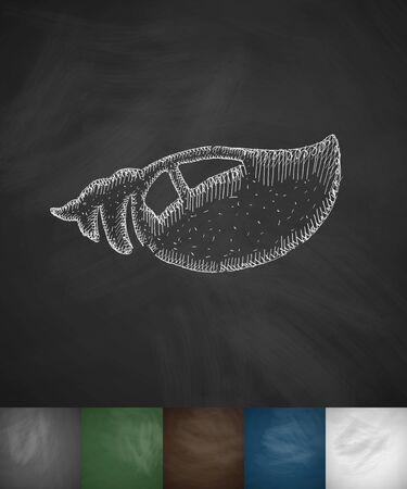 clam illustration: clam icon. Hand drawn vector illustration. Chalkboard Design