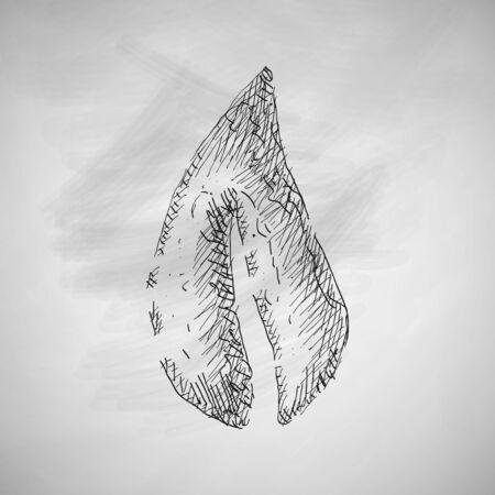 chlorophyll: leaf icon