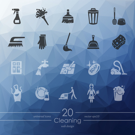 maid service: cleaning modern icons for mobile interface on blurred background
