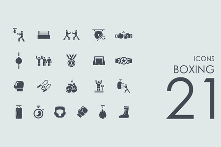 spotlit: boxing vector set of modern simple icons