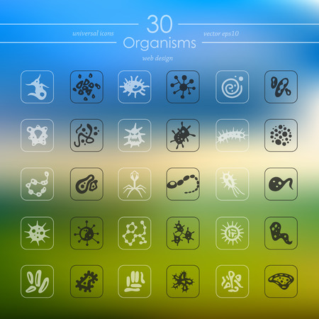 implement: organisms modern icons for mobile interface on blurred background