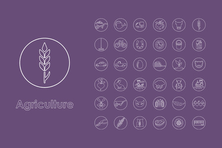 It is a set of agriculture simple web icons Illustration