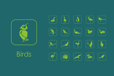 ornithologist: It is a set of birds simple web icons