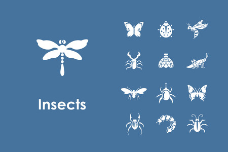 proboscis: It is a set of insects simple web icons