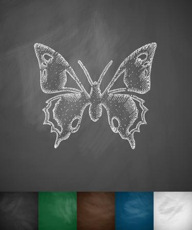 chalk line: butterfly icon. Hand drawn vector illustration. Chalkboard Design