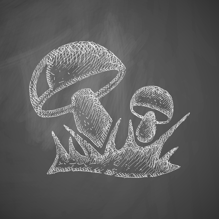 cultivation: mushrooms icon