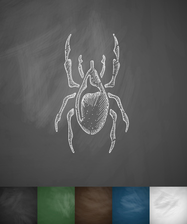 proboscis: mite icon. Hand drawn vector illustration. Chalkboard Design Illustration