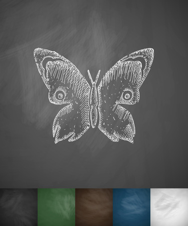 proboscis: butterfly icon. Hand drawn vector illustration. Chalkboard Design