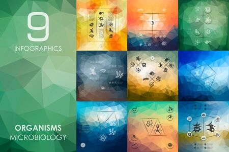 germs: organisms vector infographics with unfocused polygonal background