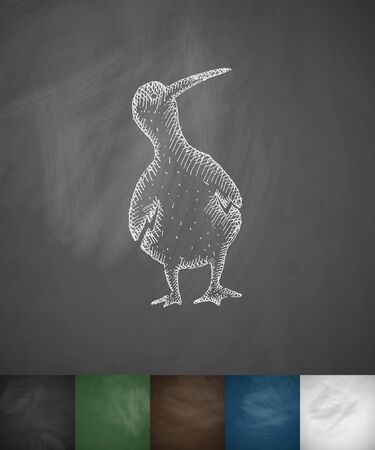 ornithologist: bird icon. Hand drawn vector illustration. Chalkboard Design Illustration