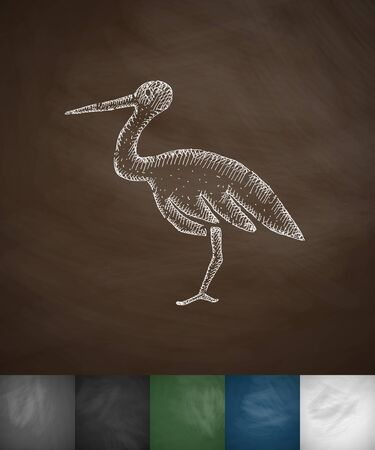 ornithologist: stork icon. Hand drawn vector illustration. Chalkboard Design