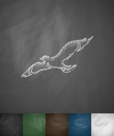 ornithologist: bird icon. Hand drawn vector illustration. Chalkboard Design Illustration