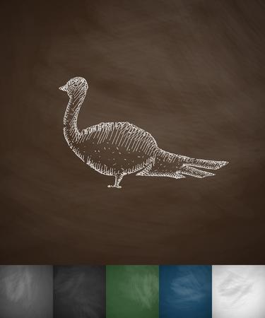 migrating birds: pheasant icon. Hand drawn vector illustration. Chalkboard Design Illustration