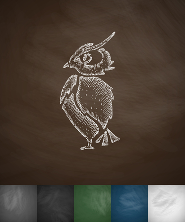 ornithologist: owl icon. Hand drawn vector illustration. Chalkboard Design