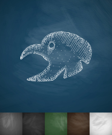 ornithologist: turkey icon. Hand drawn vector illustration. Chalkboard Design